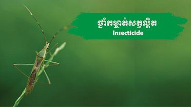 Insecticide-Menu